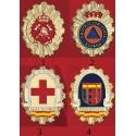 Placas Cuerpos de Emergencia